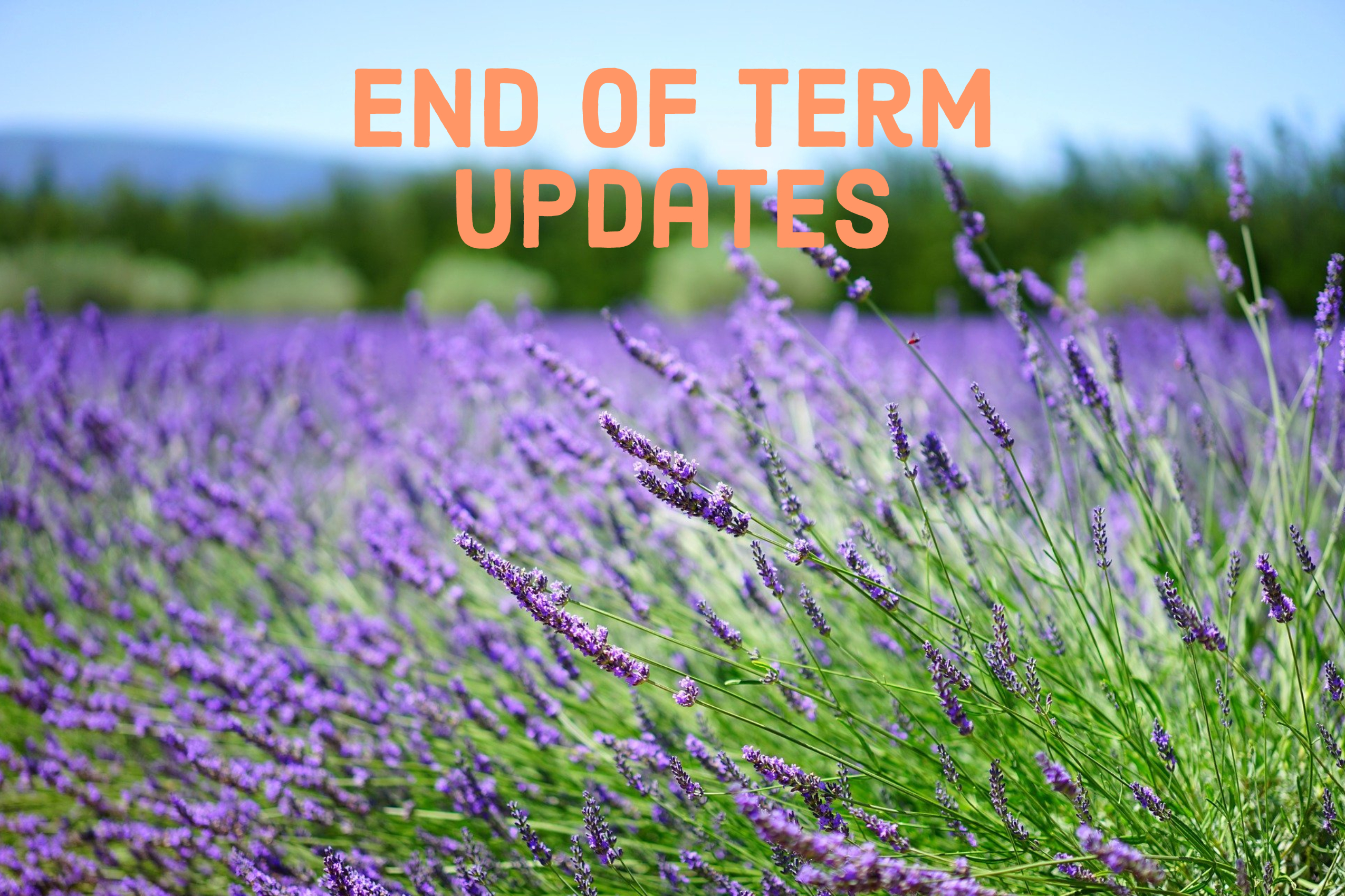 End of Term Updates – July 2021